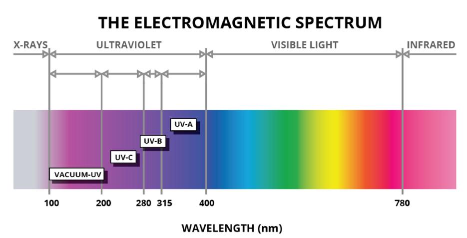 UV-C spectrum